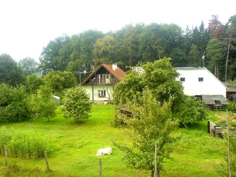 Ubytování u lesa v klidu a soukromí