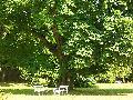 Klášterec nad Ohří - zámek