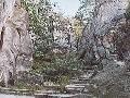 Prachovské skály